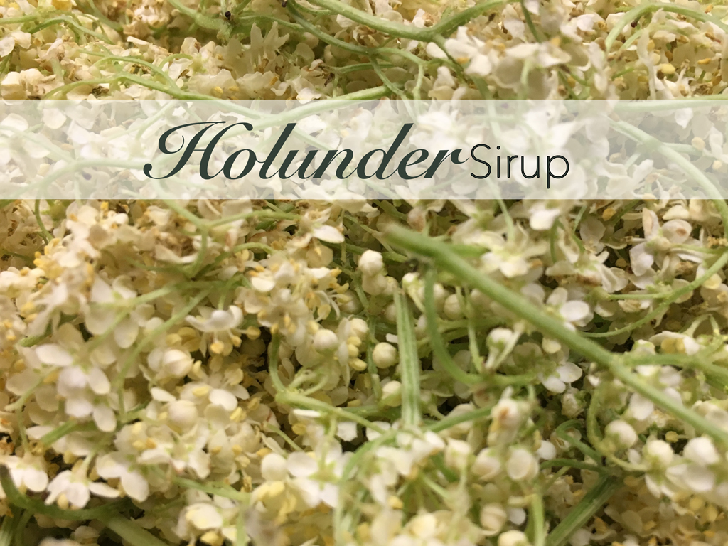 Holunder Holundersirup Rezept DIY Holler Elderflower