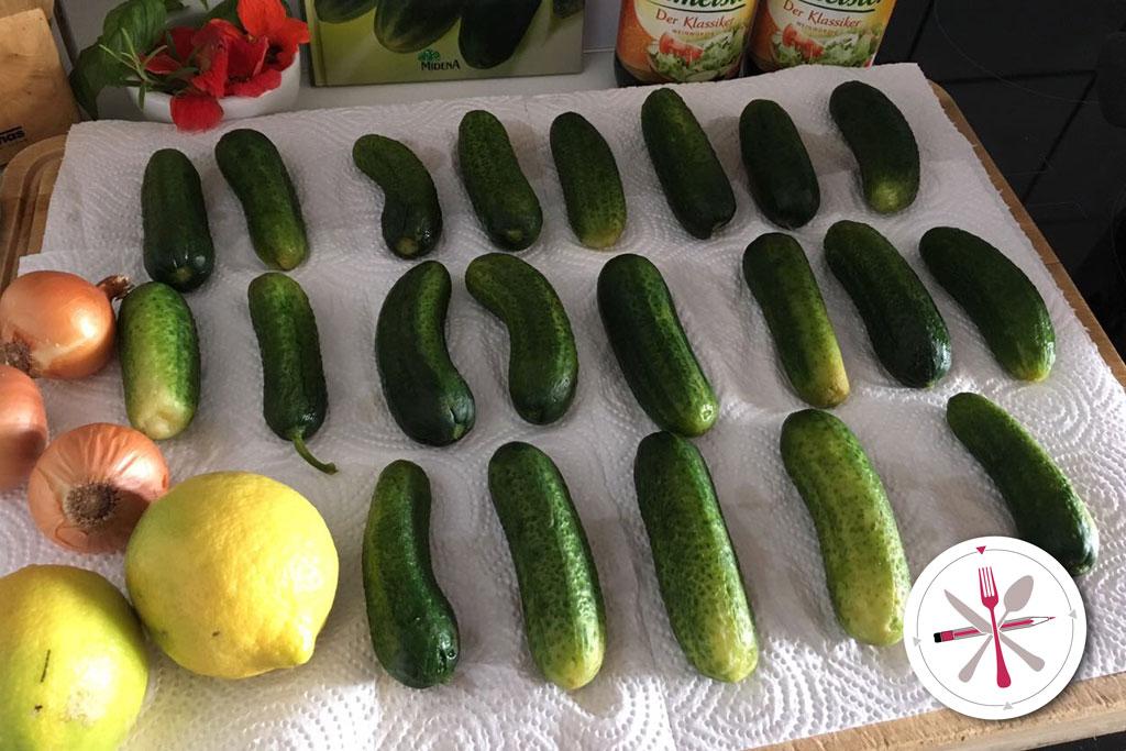 Gurken sauer einlegen mit Dill und Lorbeer und Zitronenmelisse